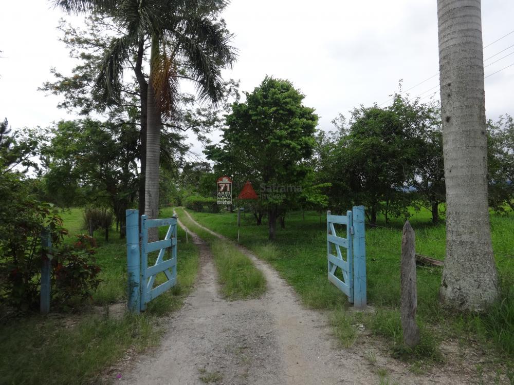 Comprar Rural / Sítio em Pindamonhangaba R$ 1.400.000,00 - Foto 1