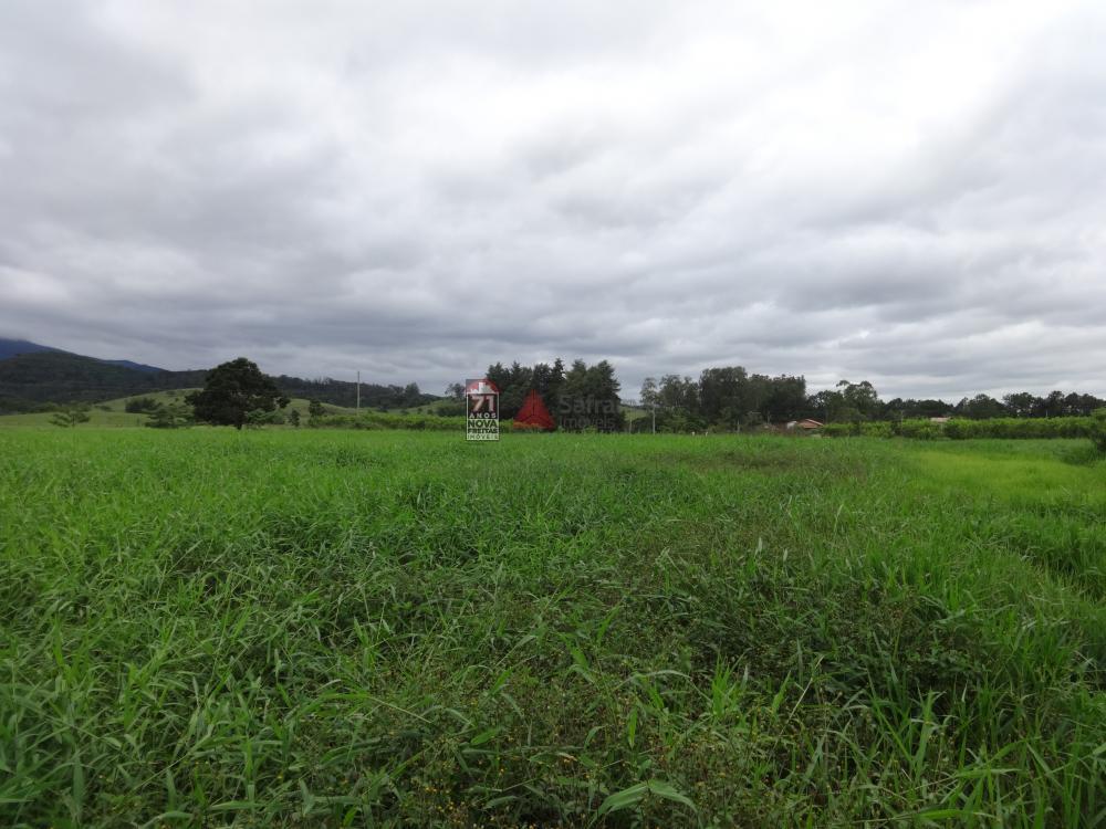 Comprar Rural / Sítio em Pindamonhangaba R$ 1.400.000,00 - Foto 3