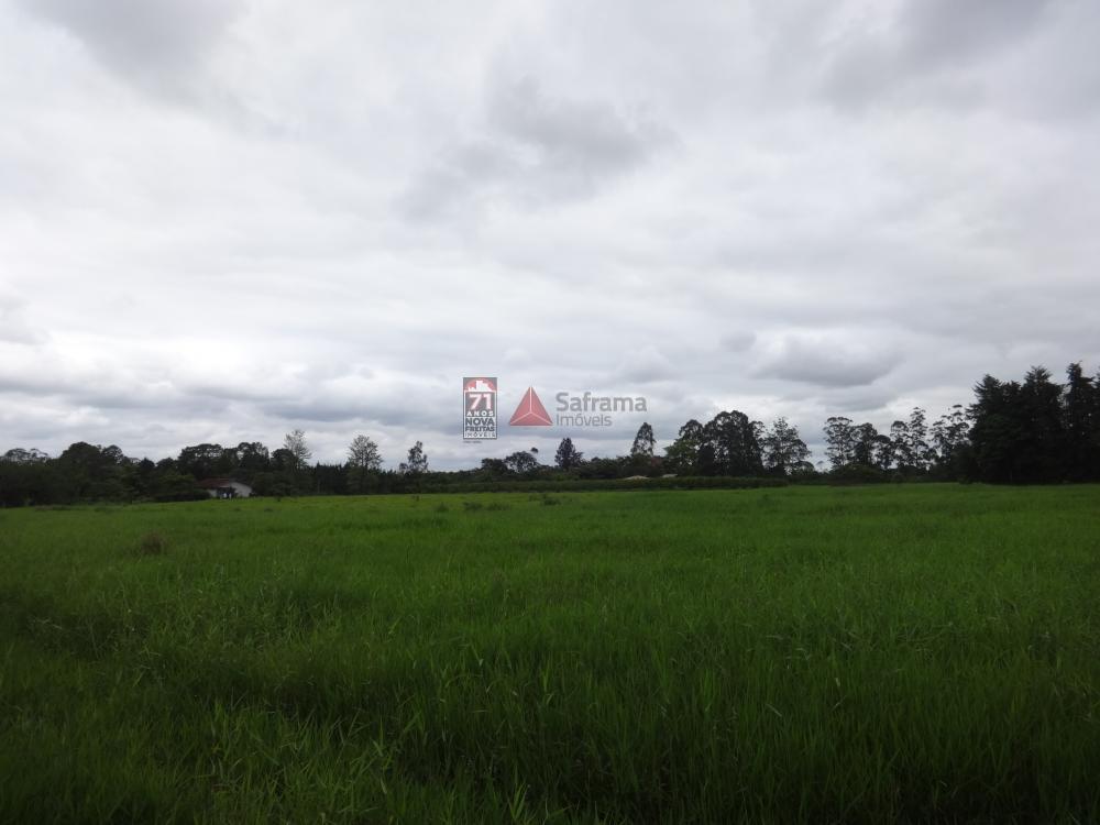 Comprar Rural / Sítio em Pindamonhangaba R$ 1.400.000,00 - Foto 13