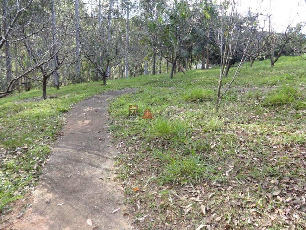 Comprar Rural / Sítio em Taubaté apenas R$ 2.000.000,00 - Foto 15