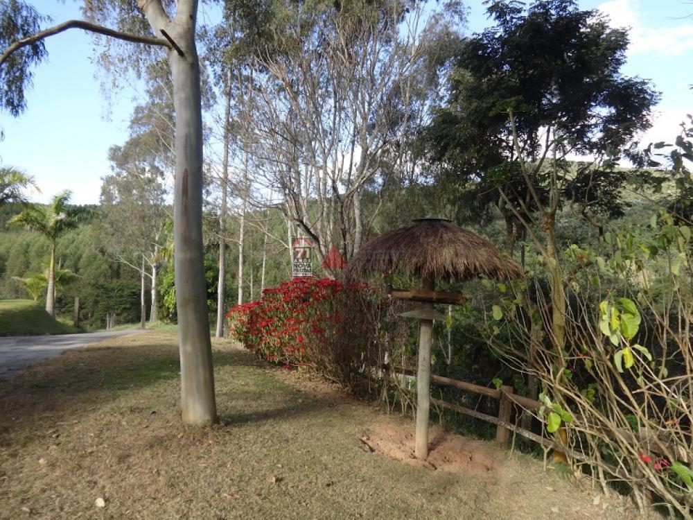 Comprar Rural / Sítio em Taubaté apenas R$ 2.000.000,00 - Foto 16
