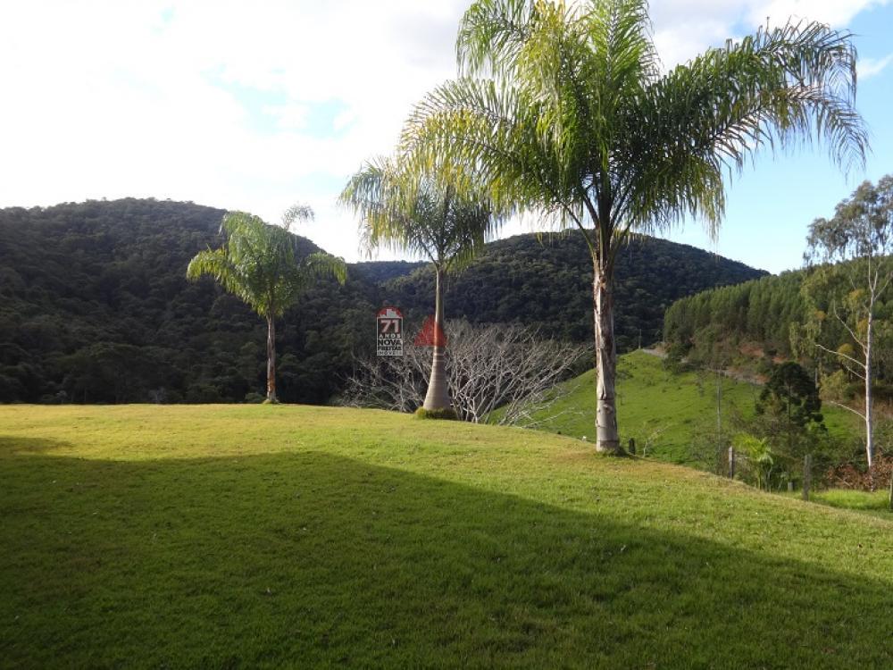Comprar Rural / Sítio em Taubaté apenas R$ 2.000.000,00 - Foto 18