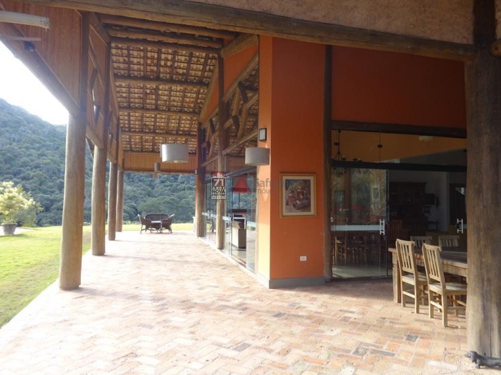 Comprar Rural / Sítio em Taubaté apenas R$ 2.000.000,00 - Foto 9