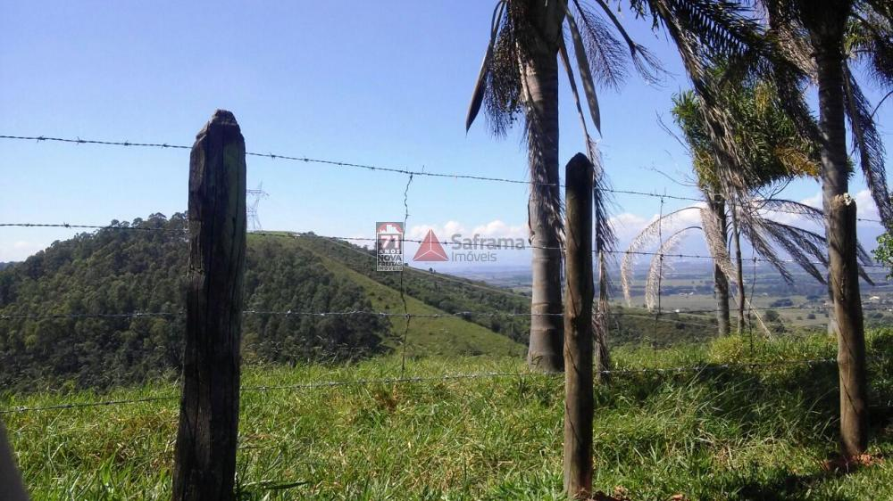 Comprar Terreno / Área em Pindamonhangaba apenas R$ 450.000,00 - Foto 4