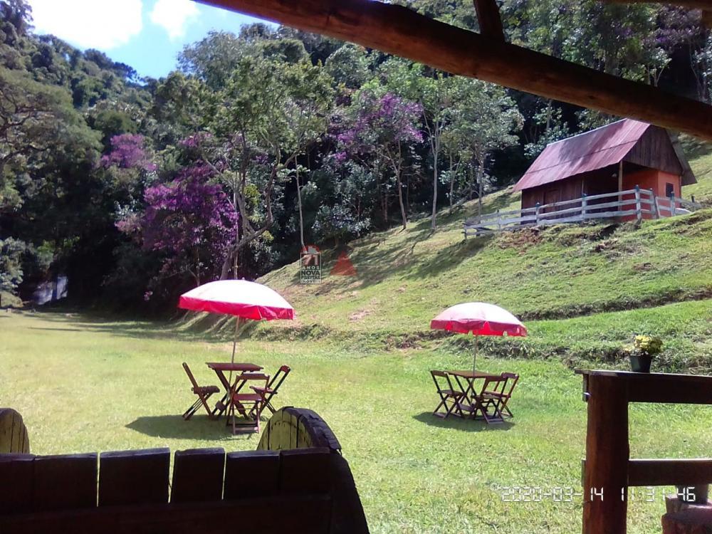 Comprar Rural / Sítio em Taubaté apenas R$ 980.000,00 - Foto 5