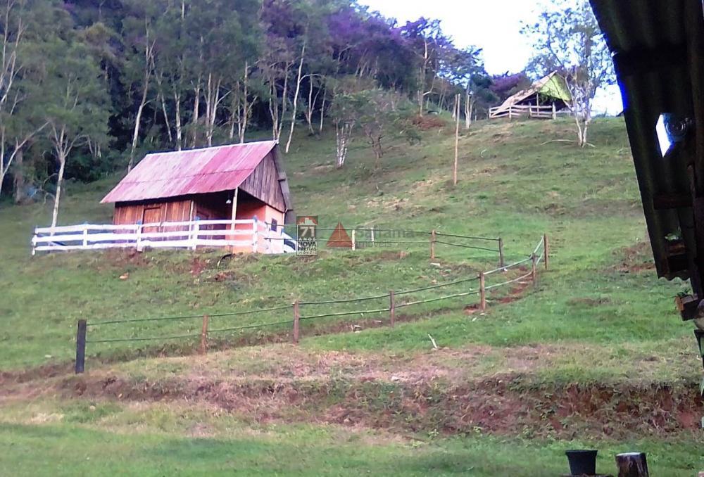 Comprar Rural / Sítio em Taubaté apenas R$ 980.000,00 - Foto 4