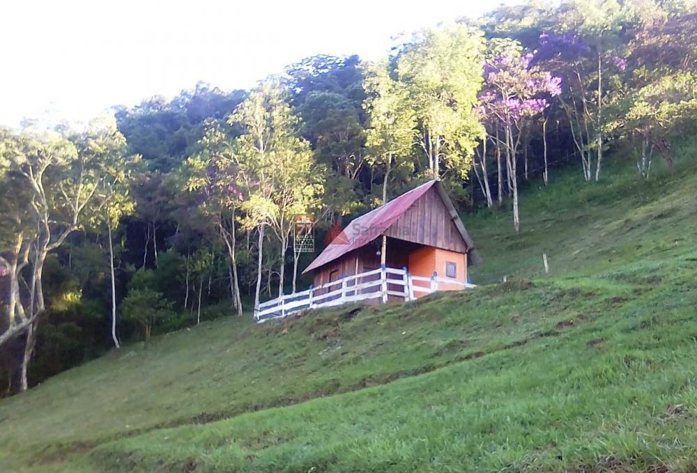 Comprar Rural / Sítio em Taubaté apenas R$ 980.000,00 - Foto 3