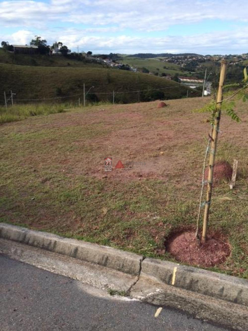 Comprar Terreno / Padrão em São José dos Campos apenas R$ 180.000,00 - Foto 4
