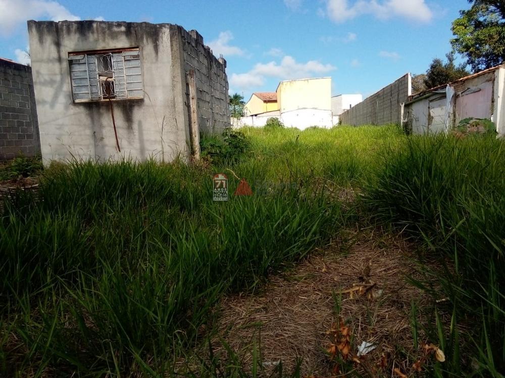 Comprar Terreno / Padrão em Pindamonhangaba apenas R$ 750.000,00 - Foto 3