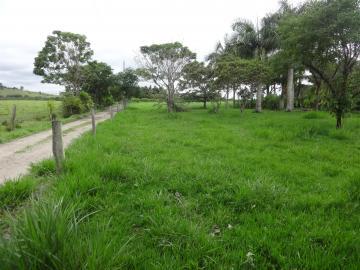 Comprar Rural / Sítio em Pindamonhangaba R$ 1.400.000,00 - Foto 6