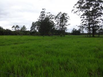 Comprar Rural / Sítio em Pindamonhangaba R$ 1.400.000,00 - Foto 7
