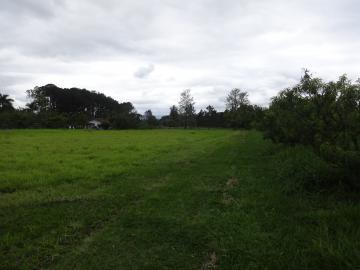 Comprar Rural / Sítio em Pindamonhangaba R$ 1.400.000,00 - Foto 11