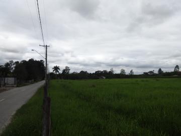Comprar Rural / Sítio em Pindamonhangaba R$ 1.400.000,00 - Foto 12
