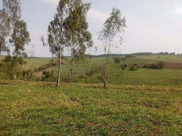 Paulinia Betel Rural Venda R$12.000.000,00 1 Dormitorio 3 Vagas Area do terreno 72000.00m2