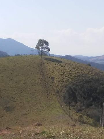 Taubate Cachoeira Area Venda R$550.000,00  Area do terreno 243210.00m2