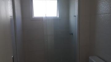 Alugar Apartamento / Padrão em Pindamonhangaba R$ 750,00 - Foto 9