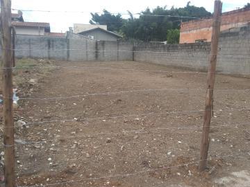 Terreno / Padrão em Pindamonhangaba