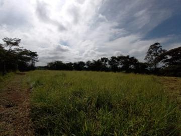 Pindamonhangaba Jardim Santa Luzia Area Venda R$8.520.685,40  Area do terreno 32153.53m2